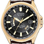 Обзор часов Citizen Eco-Drive World Perpetual AT